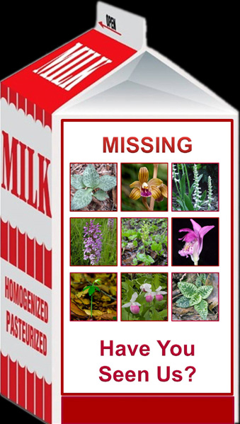 Milk carton with missing orchid pictures