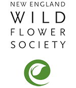 New England Wild Flower Society